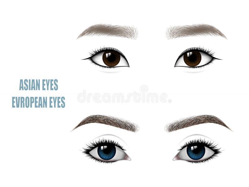Uppsättning av härliga asiat- och europékvinnaögon och krön också vektor för coreldrawillustration stock illustrationer