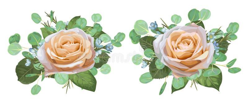 Uppsättning av härliga rosor för vektorvattenfärg med eukalyptussidor stock illustrationer