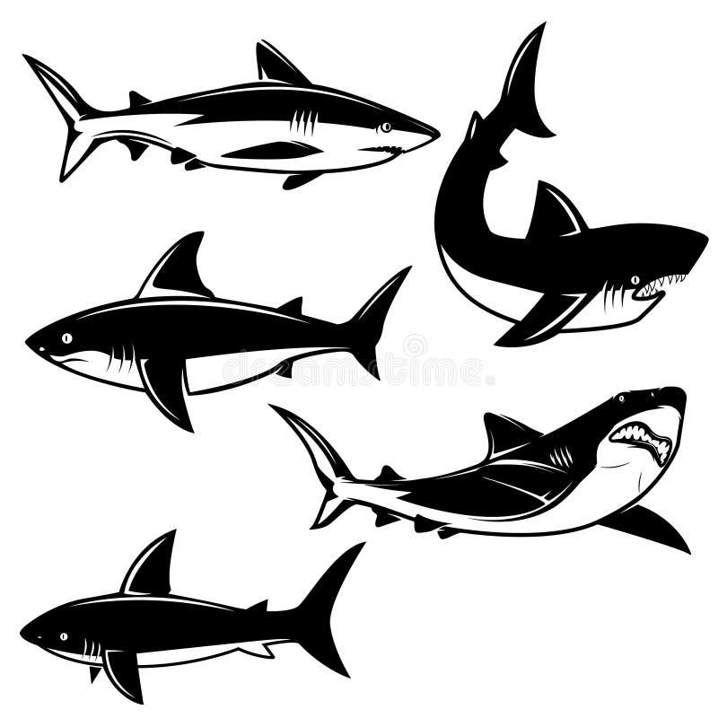 Uppsättning av hajillustrationer på vit bakgrund Planlägg beståndsdelen för logoen, etiketten, emblemet, tecken stock illustrationer