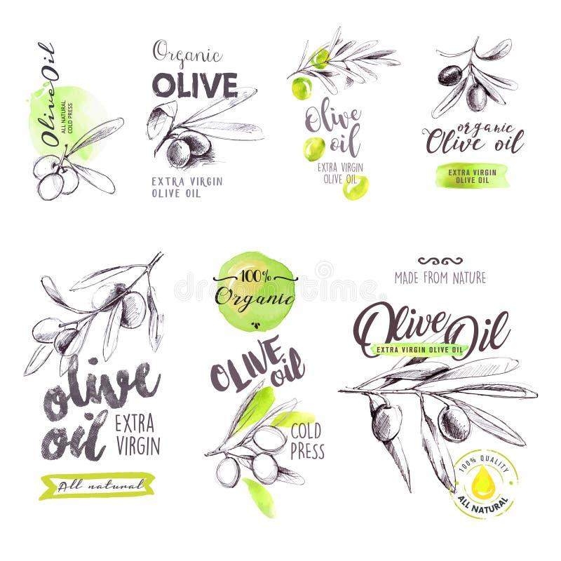 Uppsättning av hand drog vattenfärgetiketter och tecken av olivolja stock illustrationer