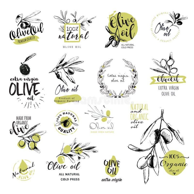 Uppsättning av hand drog vattenfärgklistermärkear och emblem av olivolja royaltyfri illustrationer