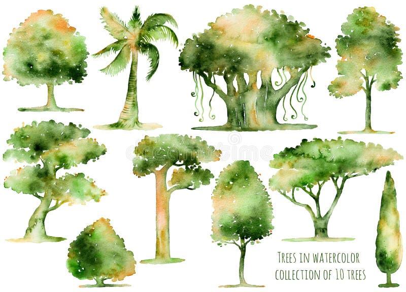 Uppsättning av hand drog vattenfärgträd royaltyfri illustrationer