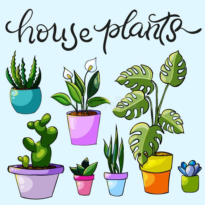 Uppsättning av husväxter och blommor arkivbild