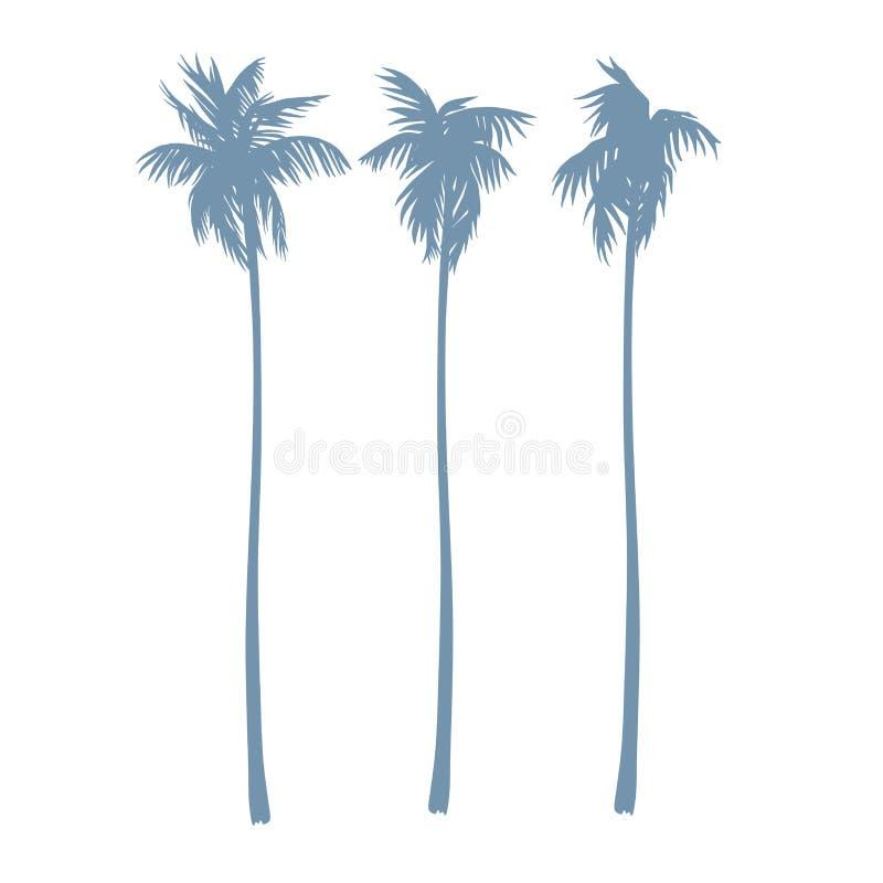 Uppsättning av konturer av palmträd i en realistisk stil Vektor im vektor illustrationer
