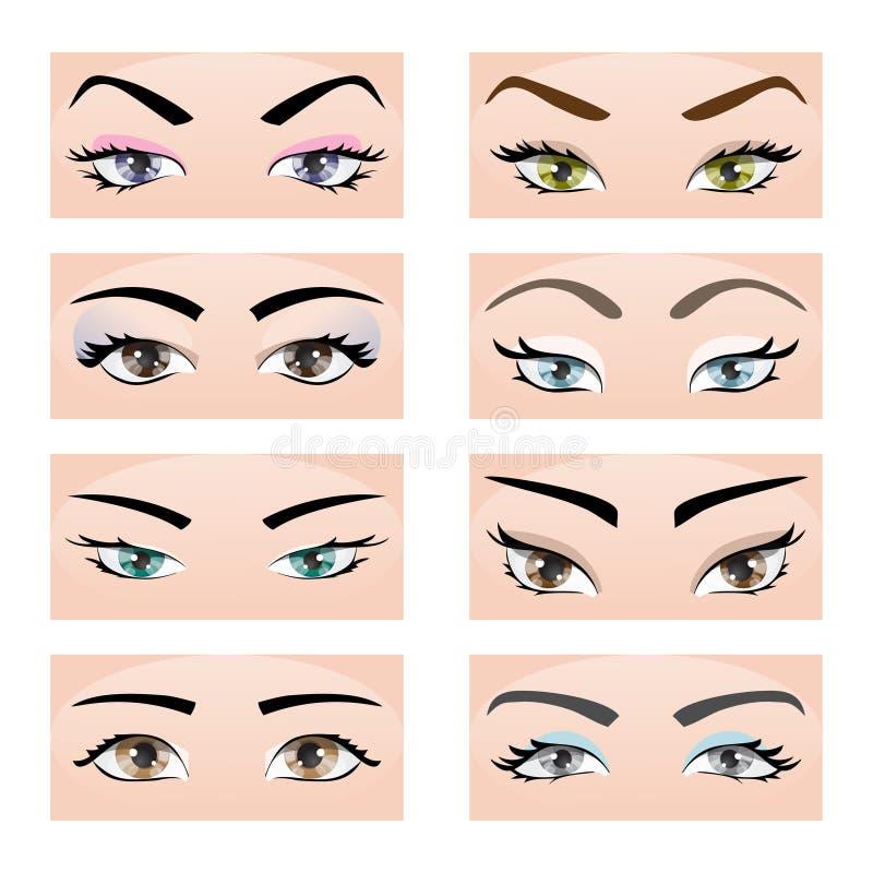 Uppsättning av kvinnligögon och ögonbryn Vektorillustration, EPS10 royaltyfri illustrationer
