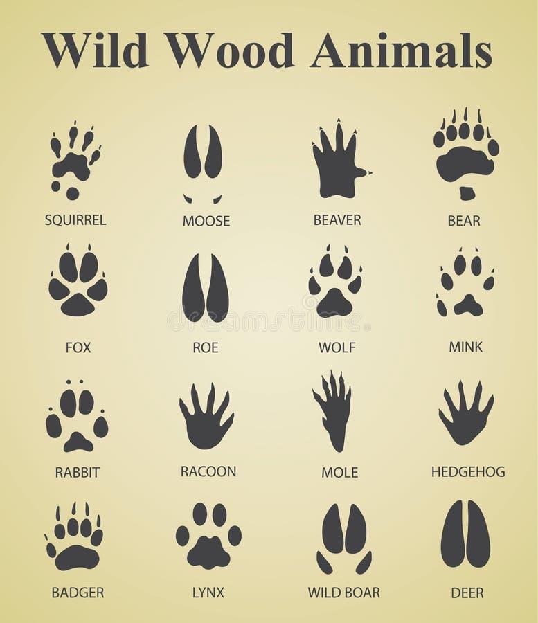 Uppsättning av lösa wood djura spår royaltyfri illustrationer