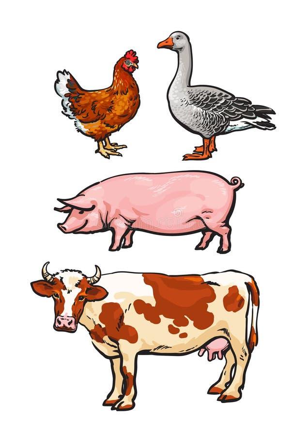 Uppsättning av lantgårddjur på den vita bakgrunden vektor illustrationer
