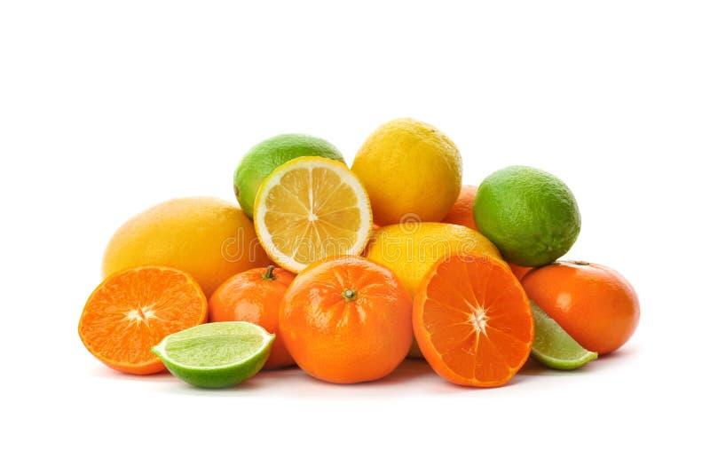 Uppsättning av nya citrusfrukter arkivfoto