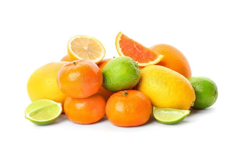 Uppsättning av nya citrusfrukter royaltyfria bilder