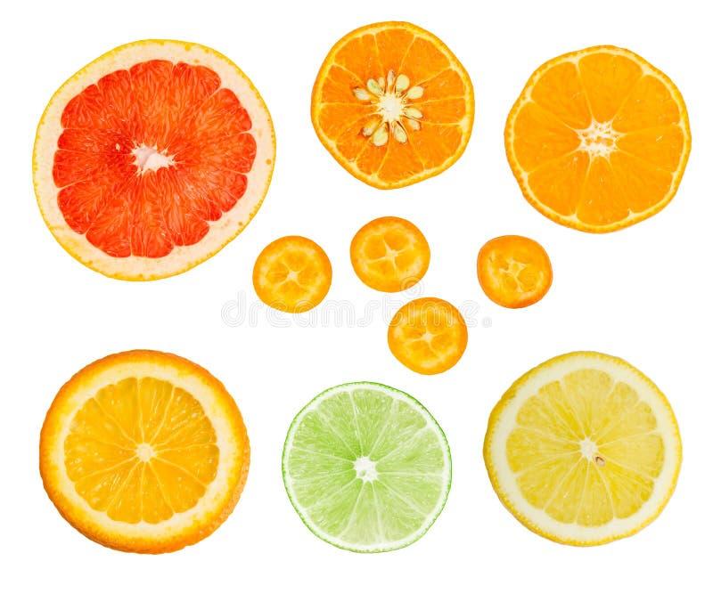 Uppsättning av nya citrusskivor som isoleras på vit bakgrund fotografering för bildbyråer