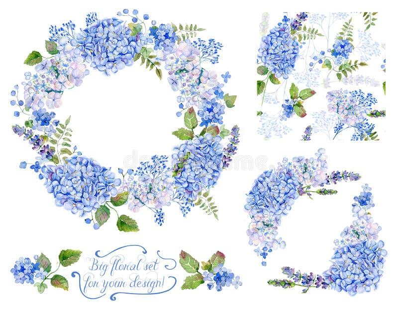 Uppsättning av olika blått, cyan vanlig hortensia, lavendel, vinbär, fram royaltyfri foto