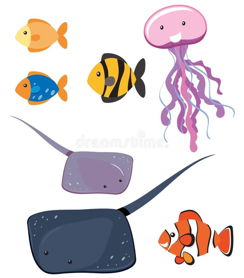 Uppsättning av olika havsdjur royaltyfri illustrationer
