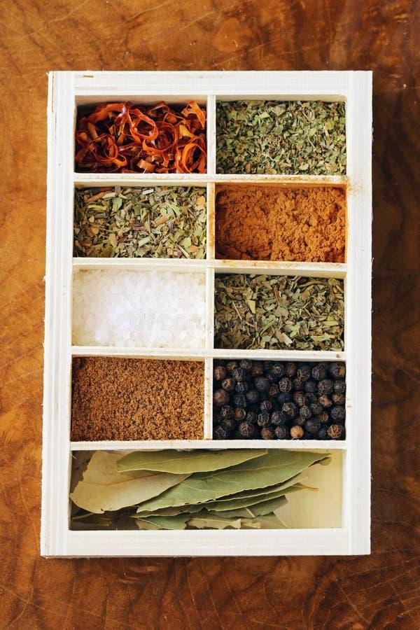 Uppsättning av olika kryddor (peppar, salt, gurkmeja, lagerbladar, chili, örter) royaltyfri bild