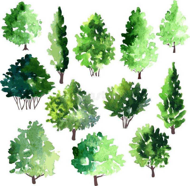 Uppsättning av olika lövfällande träd royaltyfri illustrationer