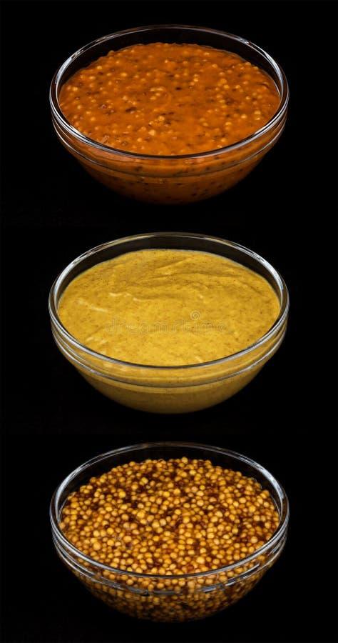 Uppsättning av olika typer av senap arkivbild