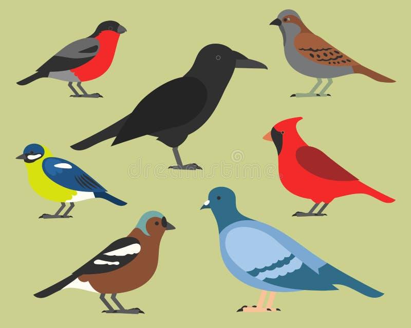 Uppsättning av plana fåglar som isoleras på bakgrund olika tropiska och inhemska fåglar, enkla fåglar för tecknad filmstil för lo stock illustrationer