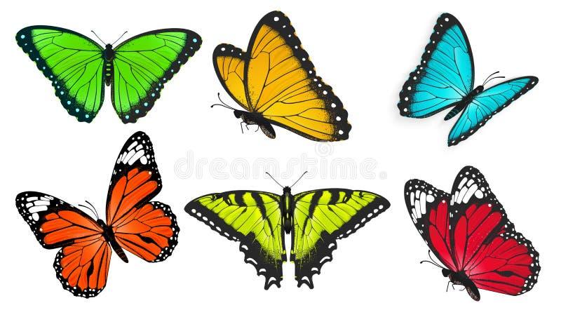 Uppsättning av realistiska, ljusa och färgrika fjärilar, fjärilsvektor stock illustrationer