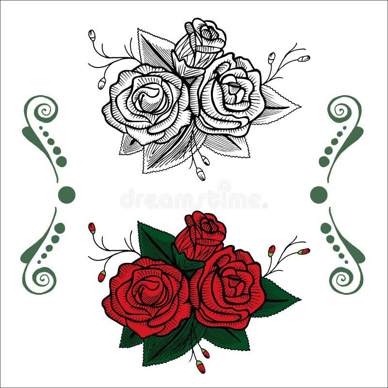 Uppsättning av rosor, färgläggning, diagram royaltyfri illustrationer