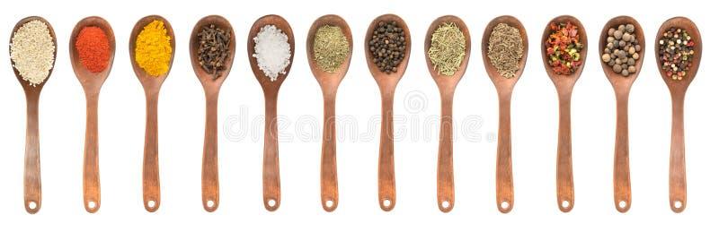 Uppsättning av skedar med olika kryddor arkivbilder