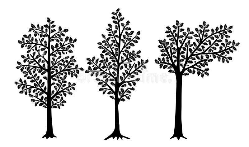Uppsättning av stiliserade ekar som isoleras på vit bakgrund Kan användas för inregarnering royaltyfri illustrationer