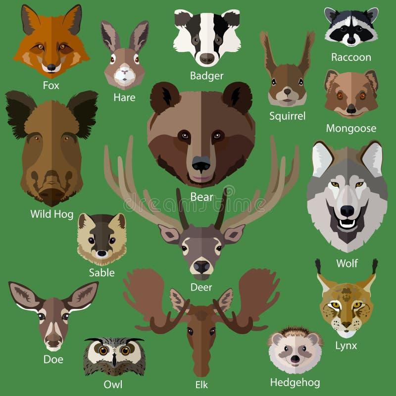 Uppsättning av symboler för skogdjurframsidor vektor illustrationer