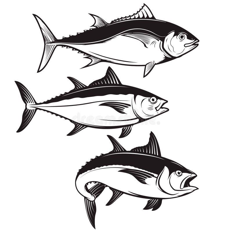 Uppsättning av symboler för tonfiskfisk som isoleras på vit bakgrund Designelem vektor illustrationer