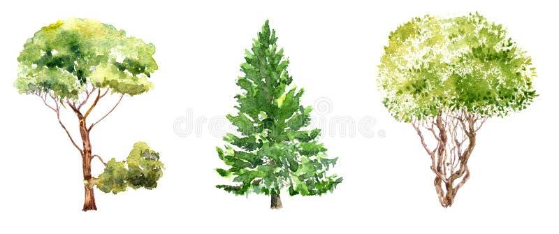Uppsättning av träd som drar vid vattenfärgen royaltyfri illustrationer