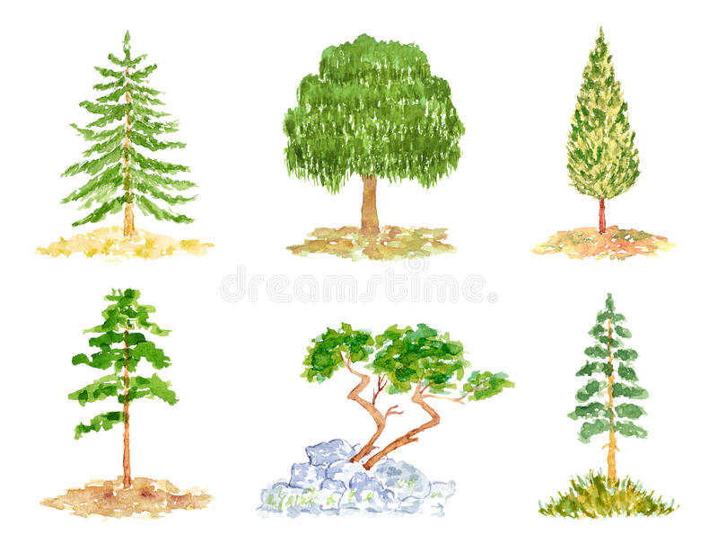Uppsättning av träd, vattenfärghand som dras och målas vektor illustrationer