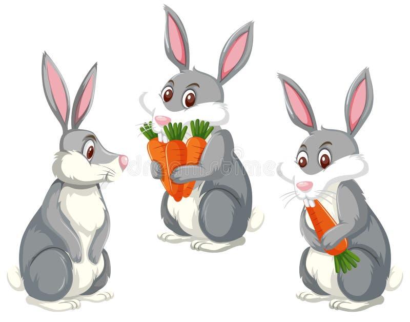Uppsättning av tre gulliga kaniner royaltyfri illustrationer