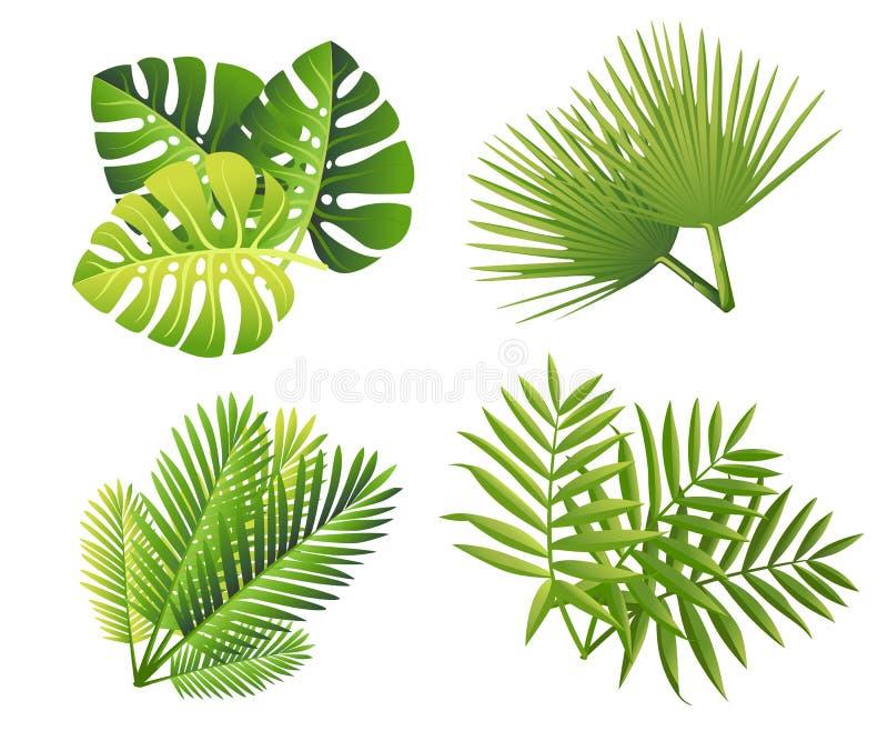 Uppsättning av tropiska gröna sidor Plan stilpalmblad Exotisk växtsymbol Vektorillustration som isoleras på vit bakgrund arkivfoton