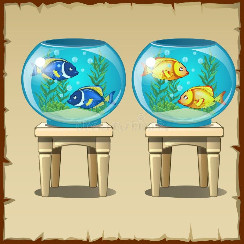 Uppsättning av två akvarier med fisken på trästolar stock illustrationer