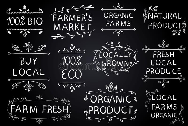 Uppsättning av typografiska beståndsdelar för VEKTOR på den svart tavlan Bönder marknadsför, brukar ny ecomat på vit bakgrund Grä vektor illustrationer