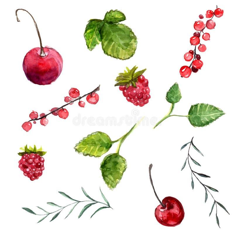 Uppsättning av vattenfärgbärkörsbäret, röd vinbär och hallon, sidor av mintkaramellen och rosmarin tillgängliga designecoelement  stock illustrationer