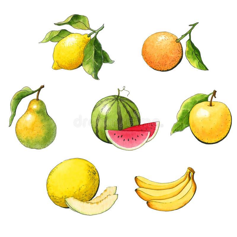 Uppsättning av vattenfärgfrukt royaltyfri illustrationer