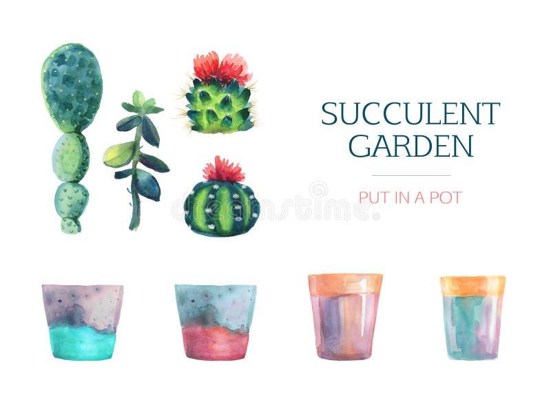 Uppsättning av vattenfärgsuckulenten och en blomkruka royaltyfri illustrationer