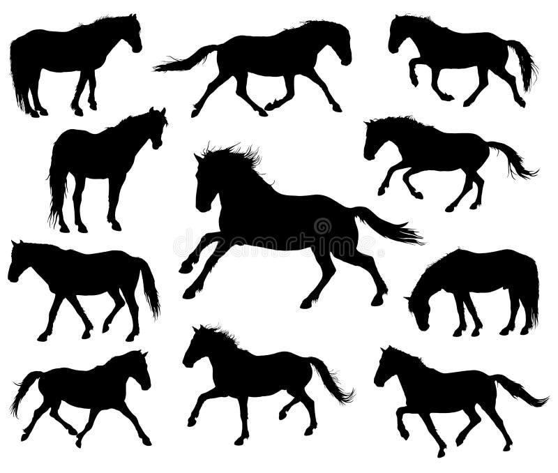 Uppsättning av vektorhästkonturer royaltyfri illustrationer