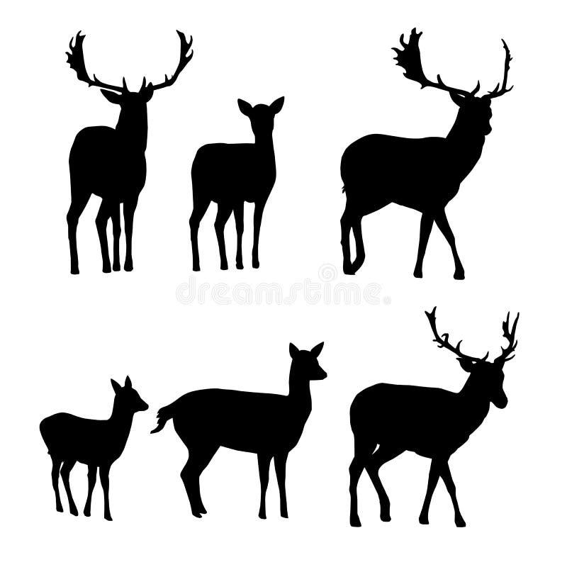 Uppsättning av vektorkonturer av hjortar med en lisma royaltyfri illustrationer