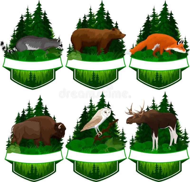 Uppsättning av vektorskogsmarkemblem med ladugårdugglan, den röda räven, tvättbjörn, grisslybjörnen, älgtjuren och zubrbuffelbiso stock illustrationer