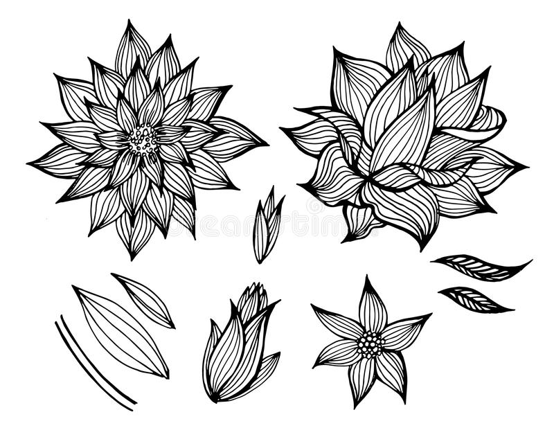 Uppsättning av vektorsvartblommor vektor illustrationer