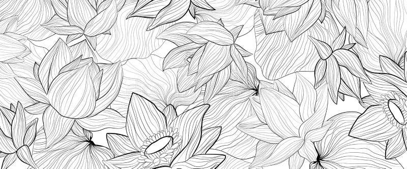 Uppsättning av vit bakgrund för vektor med svarta konturer för handattraktion av lotusblommablomman och sidor vektor illustrationer