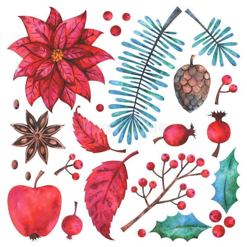 Uppsättning för beståndsdelar för vattenfärg för glad jul och för lyckligt nytt år blom- stock illustrationer
