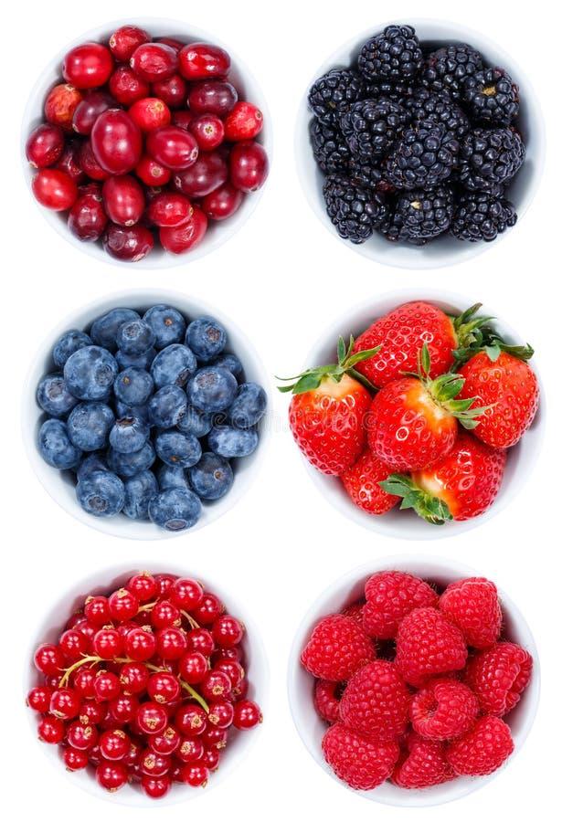 Uppsättning för collage för samling för bärbärfrukter från ovannämnd bunkeisolator royaltyfri foto