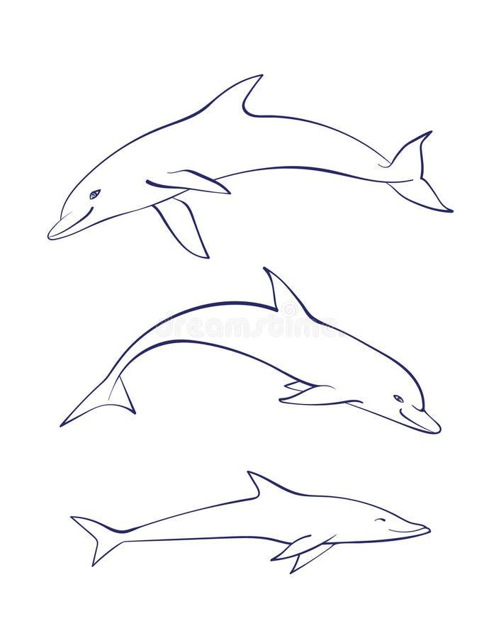 Uppsättning för delfin för hav för vektoröversiktstecknad film Grafisk undervattens- djur illustration som isoleras på vit bakgru vektor illustrationer