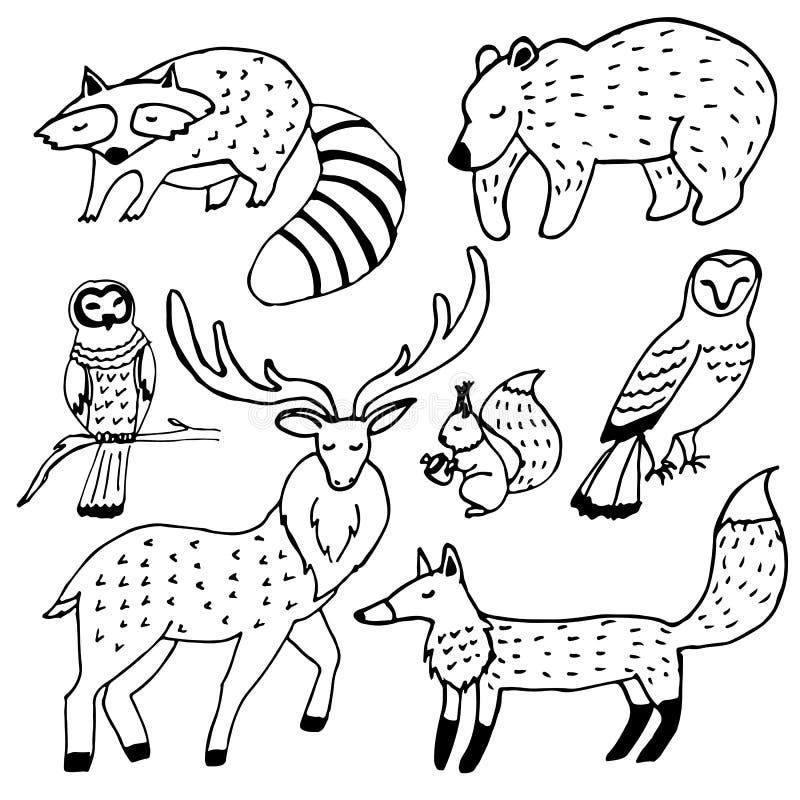 Uppsättning för färgpulver för skogdjurteckningar royaltyfri foto