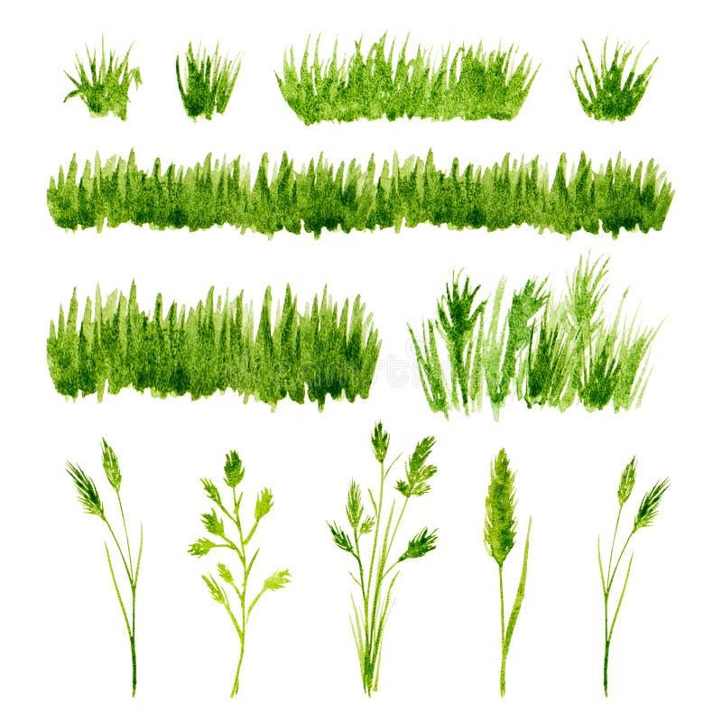 Uppsättning för grönt gräs för vattenfärg på vit bakgrund stock illustrationer