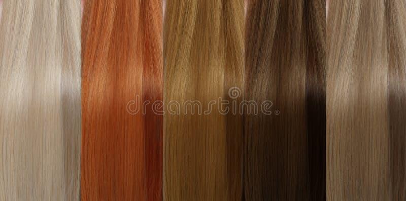 Uppsättning för hårsamlingsfärger toner arkivfoton