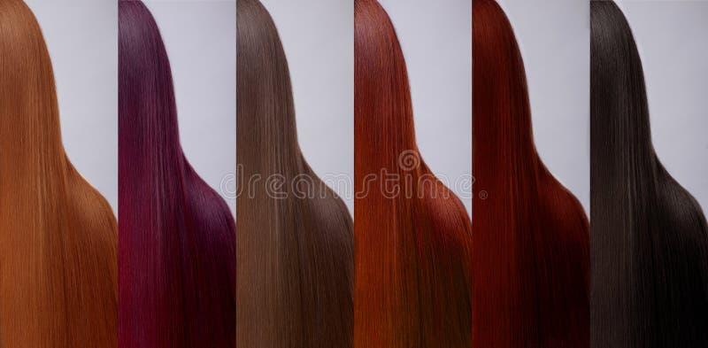 Uppsättning för hårsamlingsfärger toner arkivfoto