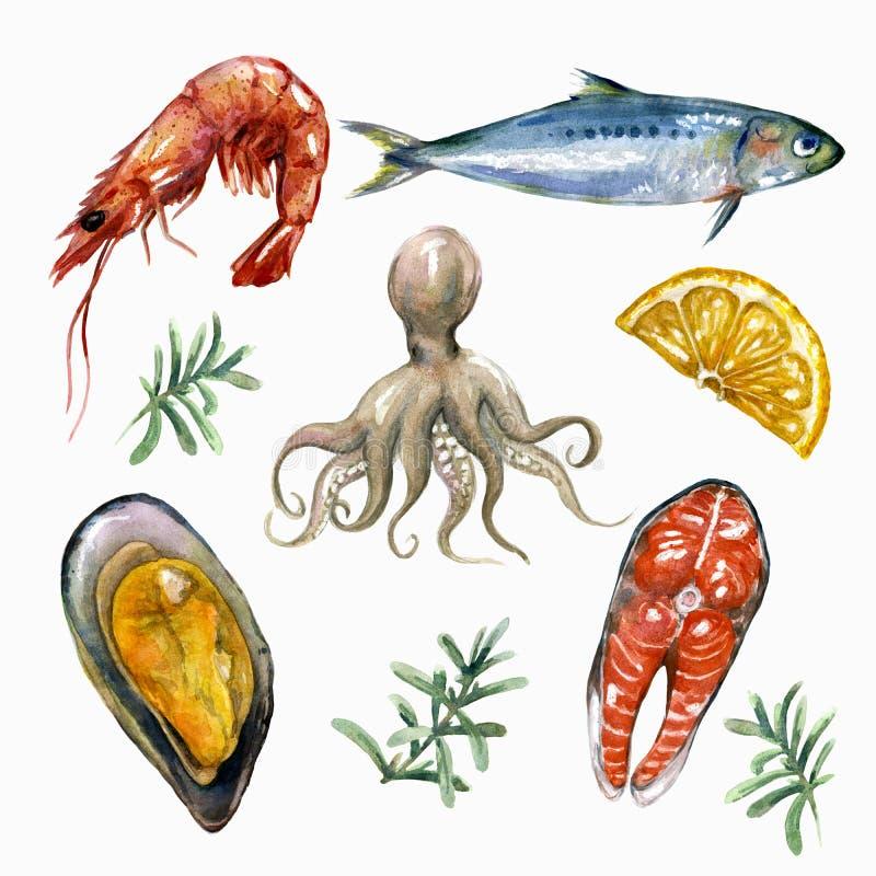 Uppsättning för havsmat stock illustrationer
