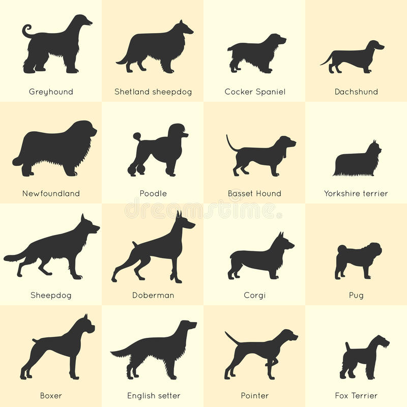 Uppsättning för hundkapplöpningavelsymbol vektor illustrationer