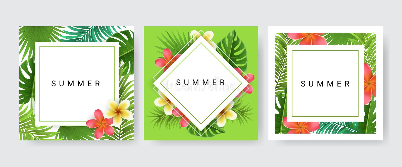 Uppsättning för samling för kortram med palmbladet och den tropiska blomman royaltyfri illustrationer